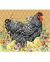 We are clucking over this darling barred Plymouth Rock Hen!  