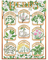 Wonderful details, delicate colors and a vintage seed packet label feel make this botanical style sampler a coveted piece. Featuring nine culinary herbs: oregano, rosemary, parsley, bay laurel, garlic, chives, spearmint, dill, and basil. This design, whether stitched as individual herbs or as a complete sampler, would make a cheerful décor for your kitchen or 'she shed'.