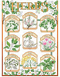The Herb Garden - PDF: Wonderful details, delicate colors and a vintage seed packet label feel make this botanical style sampler a coveted piece. Featuring nine culinary herbs: oregano, rosemary, parsley, bay laurel, garlic, chives, spearmint, dill, and basil. This design, whether stitched as individual herbs or as a complete sampler, would make a cheerful décor for your kitchen or 'she shed'.