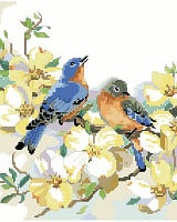 A charming bluebird couple resting upon a dogwood branch