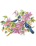 Blue Jays and Clematis - PDF: A pair of Blue Jays in the branches of a colorful Clematis bush in full bloom.
