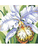 White Orchid - PDF: Elegant and subtly exotic, this beautiful cross stitch orchid infuses a sense of luxury to your decor. Makes a great gift for the gardener in your family. Surprise them for their birthday, Mother's Day or simply to celebrate spring.