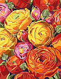 Ranunculus - PDF: An explosion of orange, red, yellow and pink fill this fabulous design by Nancy Rossi. One of our classic florals, this depiction of Ranuncula's in full bloom is a beauty.  This design can be worked up in cross stitch, big stitch or needlepoint as there is no back-stitching.
