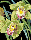 Orchids - PDF : Exotic and elegant, Cymbidium orchids leap off the black background of this beautiful classic floral design by Nancy Rossi.