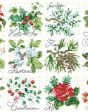 Christmas Botanical Ornaments - PDF