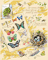 Drawings from a naturalist's notebook. Conjure up a walk in the woods with this item. Counted cross stitch design by Nancy Rossi.
