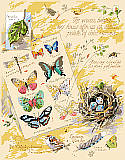 The Woods Behind My House - PDF: Drawings from a naturalist's notebook. Conjure up a walk in the woods with this item. Counted cross stitch design by Nancy Rossi.