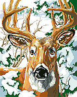 Staring right at you is a perfect ten point buck, surrounded by fir trees laden with snow.